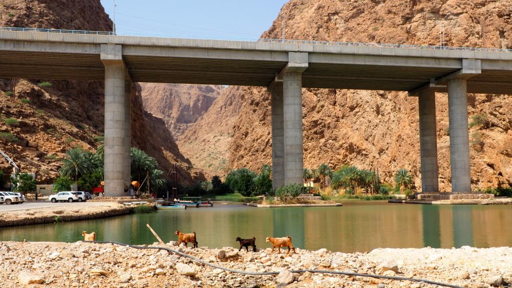 Highwaybrücke am Wadi Shab im Oman