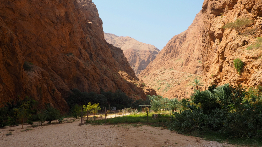 Plantagen im Wadi Shab im Oman