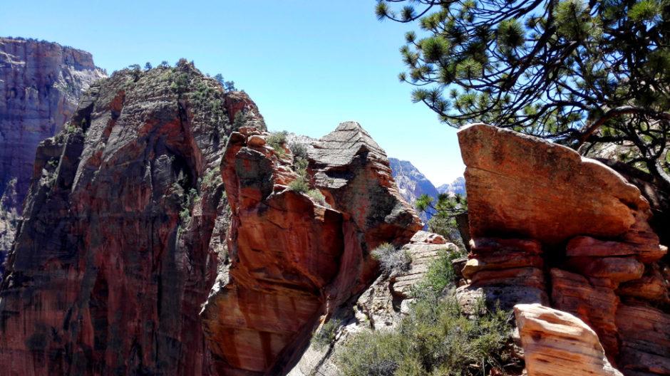 Blick auf die Spitze von ANgels Landing im Zion National Park in Utah