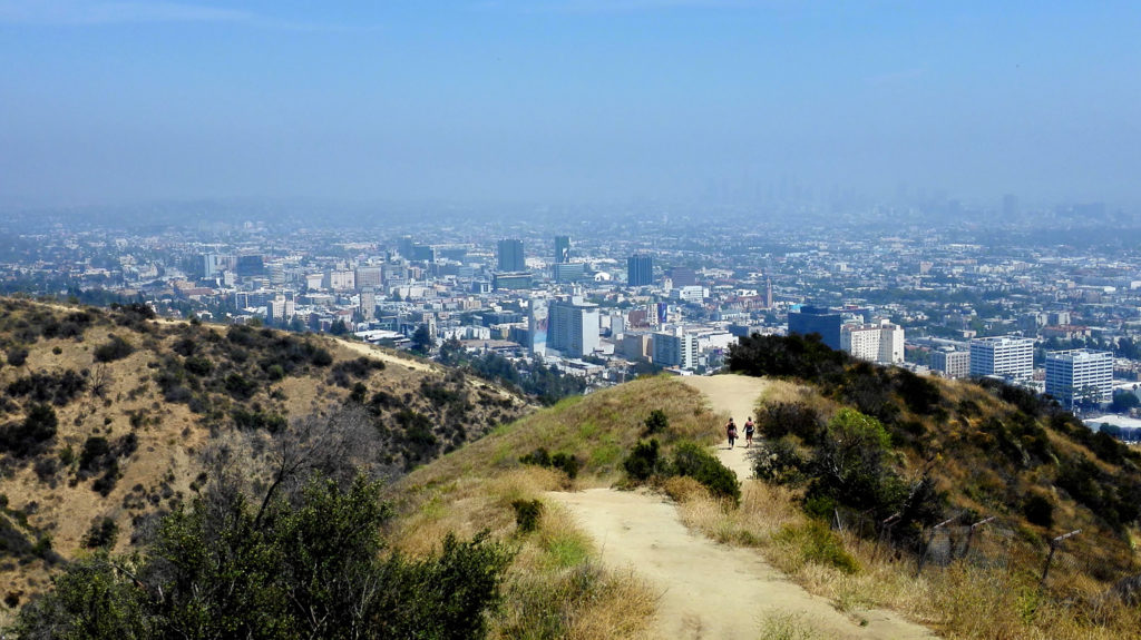 Blick vom Runyon Canyon auf Los Angeles
