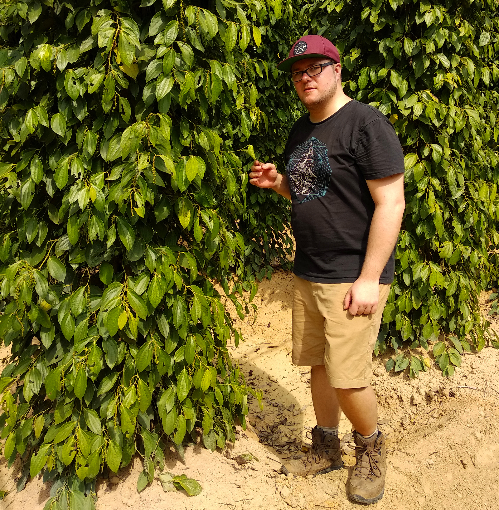 Marc Möllmann auf La Plantation in Kampot