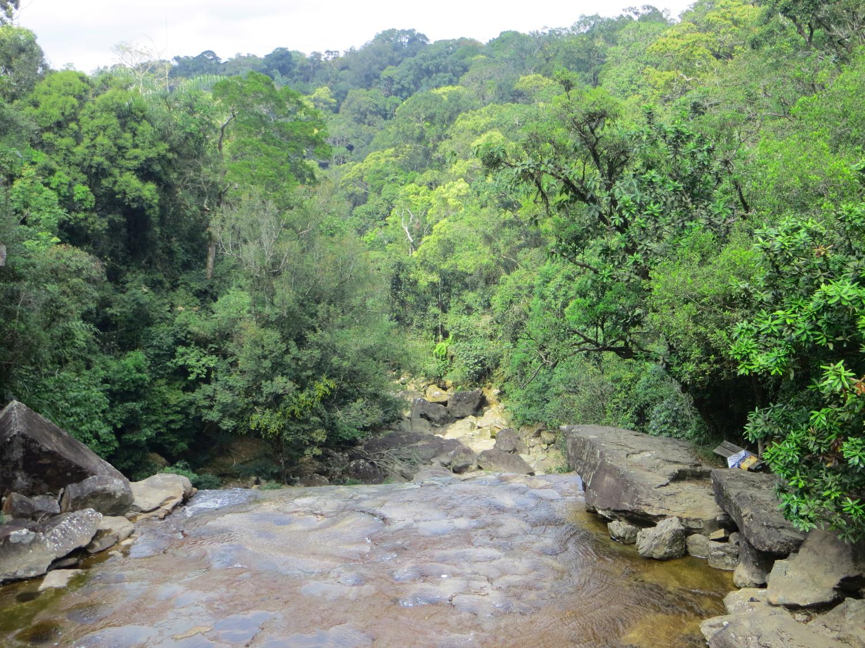 Blick in den Dschungel vom Povokvil Wasserfall