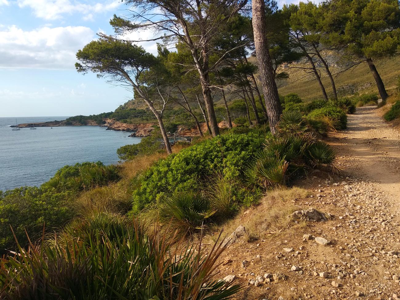 Küstenwanderweg nach Es Caló
