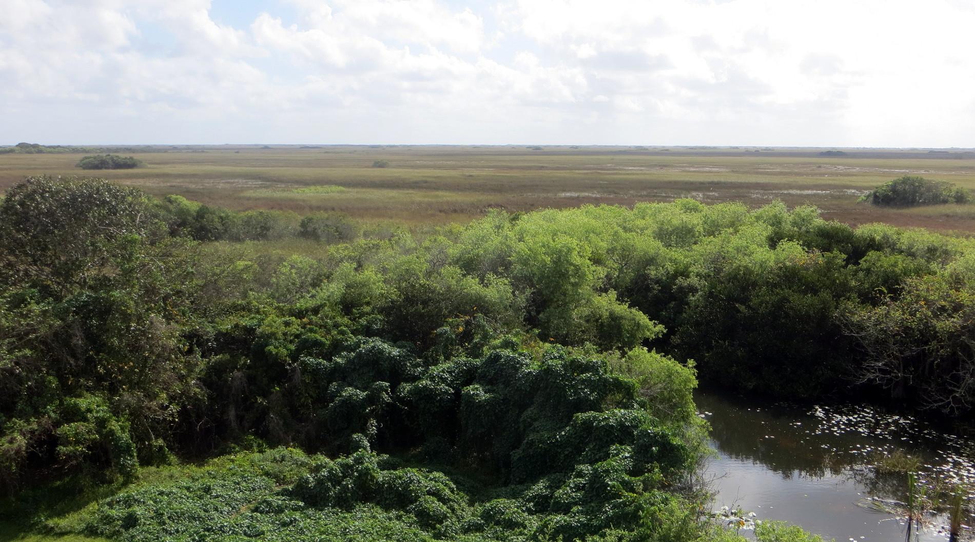 Aussicht auf das Shark Valley