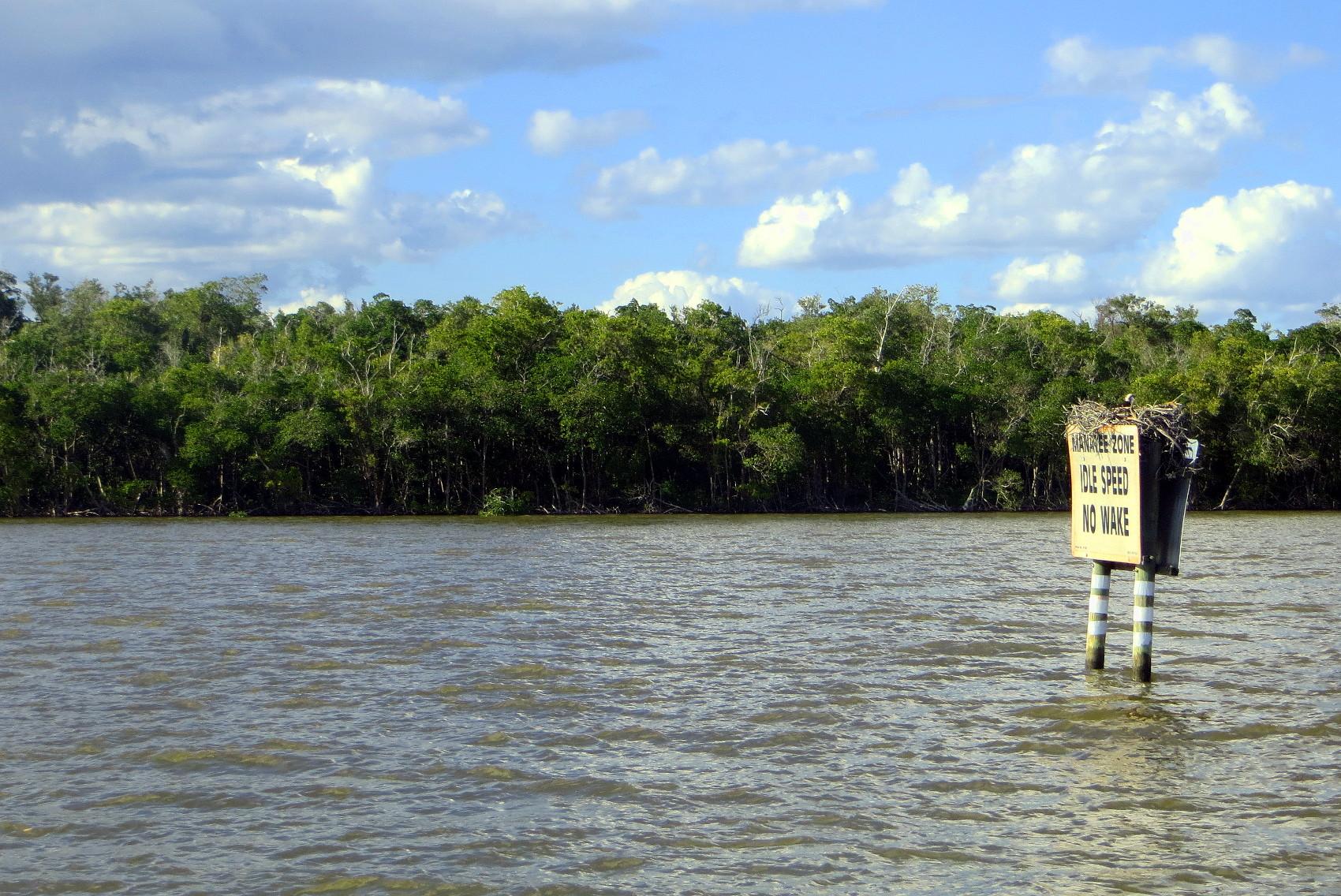 Everglades Gulf Coast