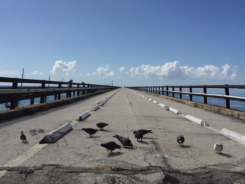 Florida Keys, Highway