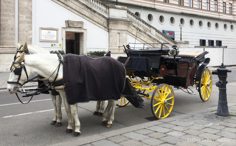Eine Pferdekutsche in Wien